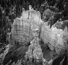 _MGL2312-Edit (t.beam) Tags: bw white black landscape grey utah blackwhite sandstone overlook canyons hoodoos striations balancedrock brycecanyonnationalpark brycepoint 2013 052013