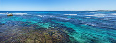 Rottnest Salmon Bay - Reef