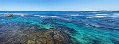 Rottnest Salmon Bay - Reef