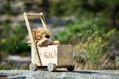 Snickargladje (Look at the Birdie!) Tags: wood lion archipelago mumm vagn dockvagn dollspram skarprunmarn champagnelda ejjonet