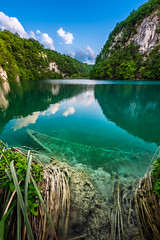 Sunk Boat in Plitvice Lakes National Park in Croatia (ansharphoto) Tags: park wood travel blue wild vacation sunlight lake reflection tree green tourism nature water ecology grass rock forest river landscape boat wooden leaf spring pond bush stream europe underwater natural lakes scenic croatia vessel lagoon fresh resort clean clear national vegetation environment flowing sunk untouched tranquil attraction freshness plitvice plitvicka likasenjcounty rastovaa