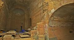 Ephesus Terrace Houses (Mark Tindale) Tags: houses building history stone architecture turkey painting ancient roman terrace lion housing walls archeology fresco ephesus dwelling mosain
