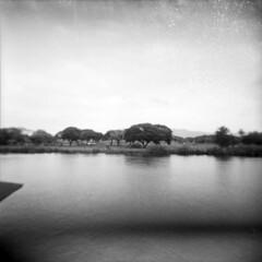 By The River Kwai (fuadabd) Tags: travel vacation mediumformat river thailand evening toycamera ishootfilm kanchanaburi riverkwai fomapan100 amazingthailand filmisnotdead shootingfilm holgagn blackandwhitefilmphotography