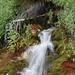 Big Springs flowing water.