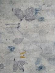 Jersey chanvre coton ecoprint rosierm murier, bleu de rose tremiere detail 2