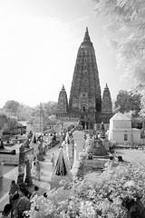 India_0179