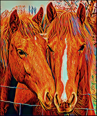 (Cliff Michaels) Tags: nikon prisma photoshop pse9 horse horses animals tennessee