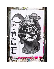 Street Art (A.CE), East London, England. (Joseph O'Malley64) Tags: ace streetart urbanart publicart freeart graffiti eastlondon eastend london england uk britain british greatbritain art artist artistry artwork pasteup wheatpaste paper mixedmedia print woodwork pez urban urbanlandscape fujix accuracyprecision