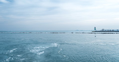 shore (damkor00) Tags: shore chicago city pier navy sea water lake cold icecold freeze landscape