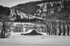 A Winter Day (David Recht) Tags: grandteton mormonrow barn blackwhite