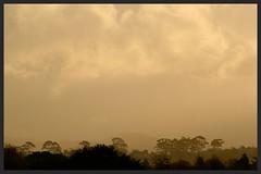 Golden clouds over Waitakere Ranges (Zelda Wynn) Tags: trees sunset weather golden cloudy waitakereranges goldenclouds westauckland waikumete zeldawynnphotography