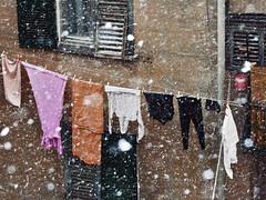 Maybe tomorrow (_Massimo_) Tags: italy snow italia liguria genoa genova laundry neve clothesline bucato pannistesi massimostrazzeri ziomamo