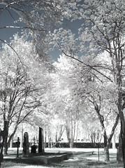 CRW_0348b (JFofonoff) Tags: graveyard rovaniemi infrared canong3 hautausmaa 720nm infrapuna