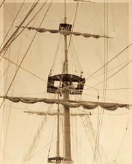 Rigging - tall ship (richard.dandrea.23759) Tags: sea sailing ship tallship