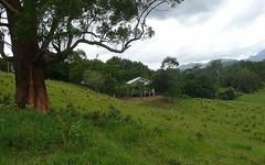 Lot 2 Bald Mountain Road Limpinwood, Murwillumbah NSW