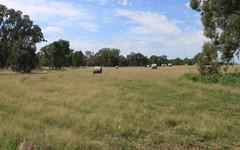130 Creasys Road, Mangoplah NSW