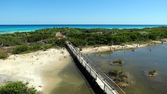 Cozumel - Punta Sur (SouthAngel:)) Tags: beach mexico faro anne alligator playa strasbourg crocodile mexique cozumel plage phare puntasur southangelvideo