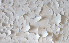 ceiling_1280 (Dear Dale) Tags: abstract ceiling peeling paint peelingpaint