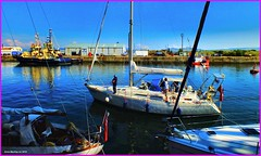 Scotland Greenock commonwealth games flotilla a guy wondering where the heck to berth his yacht 25 July 2014 by Anne MacKay (Anne MacKay images of interest & wonder) Tags: by marina anne james scotland greenock picture july games 25 mackay yachts commonwealth watt flotilla 2014