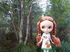 Lorna Meadow loves the woods
