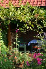 a place to live ([klauspeter]) Tags: summer house june digital canon garden rebel terrace live rosa garten 2014 klauspeter stockrosen gudrunsjden