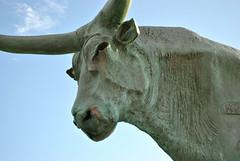 Vilanova i la Geltr, Catalonia, Spain (Tiphaine Rolland) Tags: sculpture woman statue cow spain nikon femme catalonia 1855mm 1855 espagne vache vilanova minos catalogne vilanovailageltr minotaure pasiphae d3000 nikond3000 pasipha