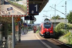 Bombardier Talent 2 (BR 442/1442) der DB Regio Nord-Ost (S-Bahn Rostock) (Vitalis Fotopage) Tags: 2 train br eisenbahn railway zug s db talent sbahn bahn rostock vorpommern deutsche mecklenburg 442 bombardier regio 1442 tiebzug
