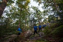 forêt de Bourron0 (faireuntour) Tags: marathon running run multiplicity clones 42 multiexposure triggertrap prépamarathon tcsnycmarathon