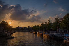 Amsterdam (sxdlxs) Tags: trees sunset summer sun color colour reflection green water netherlands colors amsterdam lights canal colorful colours sonnenuntergang sommer farbe farben niederlande