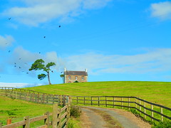 little house on the prarie (museque) Tags: