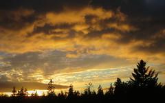 Sunset over the jack pines (yooperann) Tags: sunset lake little michigan upper peninsula
