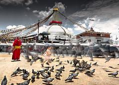 Living in the moment (Motographer) Tags: street nepal people boys birds temple buddhism monastery kathmandu boudhanath himalayas boudha motographer fotografikartz motograffer