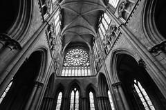 Saint-Malo Cathedral (Shane Jones) Tags: church window nikon cathedral religion pillars saintmalo sigma1020mm d7000 saintmalocathedral