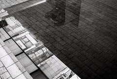 (yamato_ssk) Tags: blackandwhite bw film photography tokyo streetphotography contax 35mmfilm t3