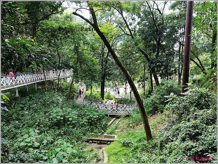 嘉義竹崎公園 (12).JPG