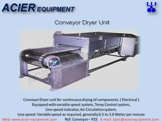 P25 Conveyor Dryer