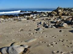 Pacific Grove, California (Jasperdo) Tags: pacificgrove california roadtrip pacificgrovemarinegardens montereypeninsula pacificocean landscape scenery rocks sand