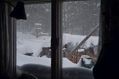 2017_0314Blizzard0002 (maineman152 (Lou)) Tags: westpond snow snowstorm northeaster blizzard nature naturephoto naturephotography winter winterweather march maine