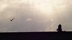 Urban Chronicles  ~ Paris ~ MjYj (MjYj) Tags: life street city blue light sunset urban bw woman white black paris sexy art texture love beauty fashion contrast dark soleil war couple pretty solitude noir day photographer time femme forum creative photojournalism documentary dancer advertisement bleu event cover amour invalides promenade record romantic paparazzi eden contract feeling blanc reflets chronicles pleasure ville homme tendre encounters freelancers mjyj mjyj misterjyesj p6090938