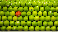 Apple with Apples (salar hassani) Tags: red green point with apples oranges tipping comparing