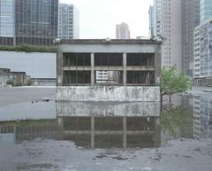 abandoned bus depot (Egg Cheung) Tags: reflection bus tree abandoned 120 film water k hongkong industrial reflect depot medium 6x7 urbex kmb fujicolorpro400h fujifilmgf670professional wwwfacebookcomurbanfragment