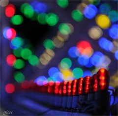 I like analog (gicol) Tags: light luz festival bulb fiesta le lumiere festa salento puglia luminaria luce lecce lampadina apulia lightparade patronale scorrano santadomenica