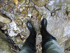 DSCN2853 (tuhinad17) Tags: black boots rubber farmer