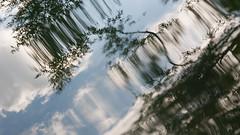 sony nex 6 + carl zeiss planar 50mm f/2 (Polina Ignatova) Tags: summer lake green water russia sony drop pavlovsk carlzeiss вода россия лето озеро капля павловск зеленое planart250 nex6 sonynex6 зфмдщмыл