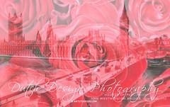 20140625_London_001_klein2 (Dutch Design Photography) Tags: uk red england flower london art wall print photo foto britain kunst great rood engeland londen muur bloem