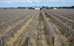 Farms 2715 and 2716, Yenda NSW