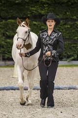 Belgian Paint Horse show - Appaloosa Championship (NosChevaux.com) Tags: horses horse cowboys cheval appaloosa cowboy paint cowgirl cowgirls chevaux painthorse équitation houyet hérock cowhorse cowhorses hostelleriedhérock