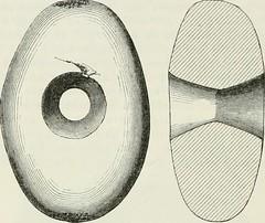 Anglų lietuvių žodynas. Žodis ovoid reiškia a knyg. kiaušininis, kiaušinio pavidalo lietuviškai.