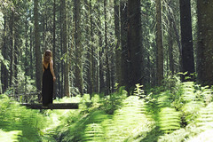 (Ane Lundeby) Tags: summer woman sun sunlight tree girl sunshine norway forest log alone trunk greenery blackdress