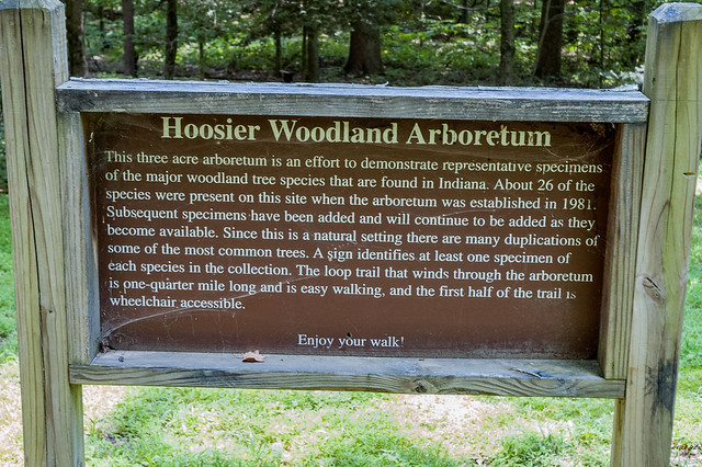 Martin State Forest - August 3, 2014